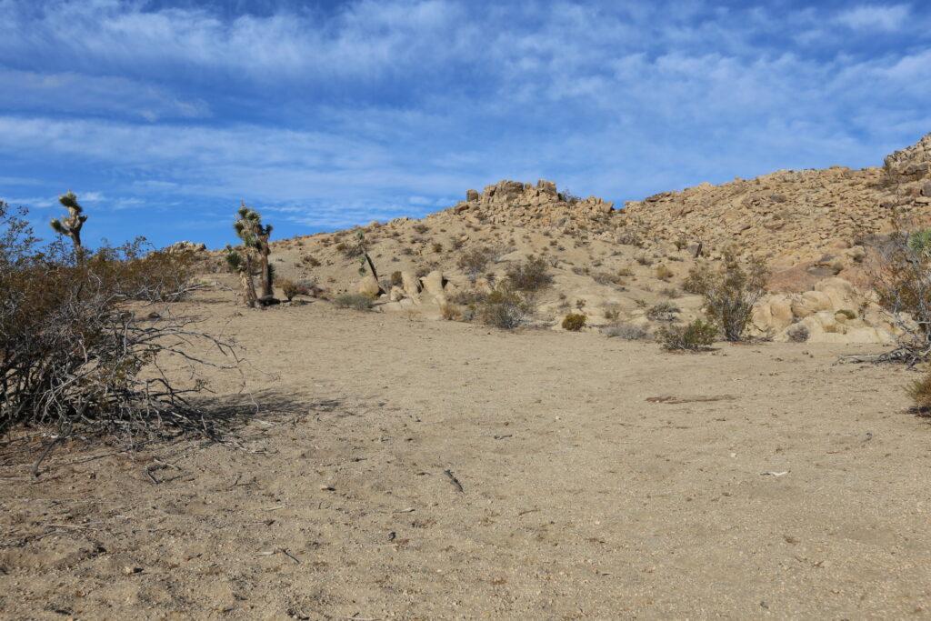 Open area - S. Main Range