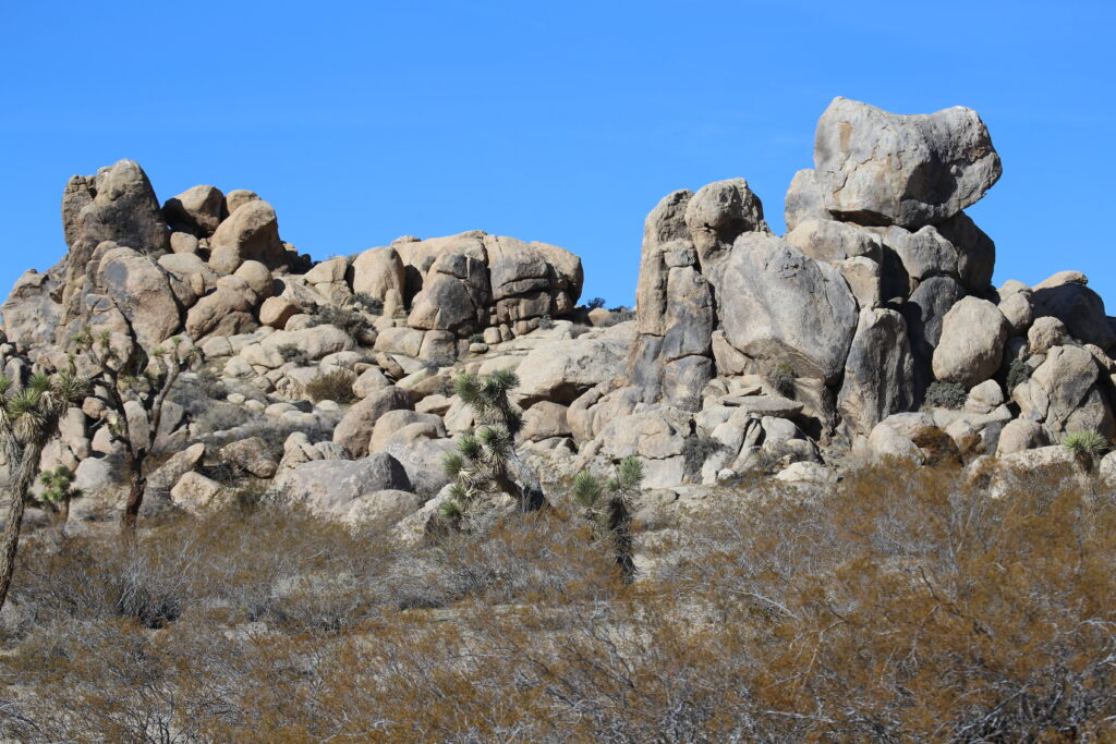 West view - Falcon's Nest