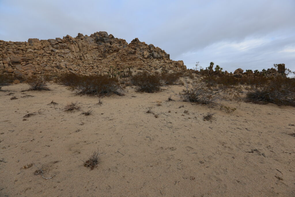 North view of East Ridge