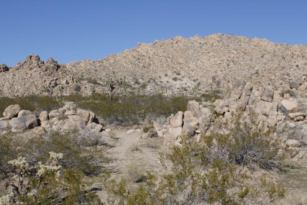 West view of Main Range